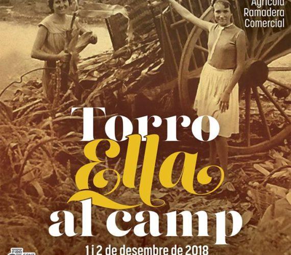 Alquiler apartamentos Estartit: Feria de Sant Andreu