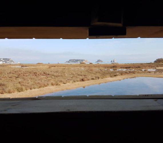 Apartamentos Estartit: Nueva laguna de la Pletera